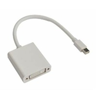 Astrotek Mini DisplayPort Male to DVI Female White